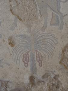 TerreSainte-date (1268)