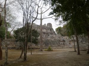 Mexique-date (1439)