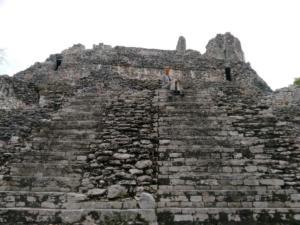 Mexique-date (1475)