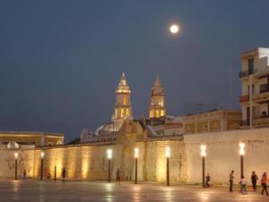 Mexique-date (1076)